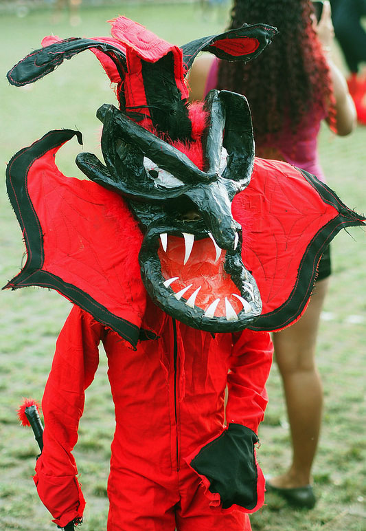 Wild Panama Devil mask
