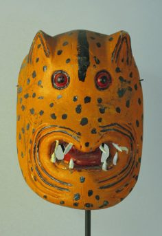 Good-looking tigre mask